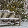 Garden Bench During Winter Snowfall At Sayen Gardens by Beth Sawickie