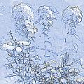 Garden Blue by Diana  Tyson