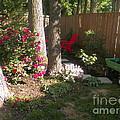 Garden Cleanup by Elinor Helen Rakowski