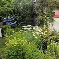 Garden Cottage by Bill Wakeley