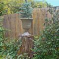 Garden Decor 2 by Muriel Levison Goodwin