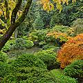 Garden Delight by Don Schwartz