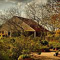 Garden Fantasy by Linda Unger