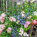 Garden Fence by Ellen  Leigh
