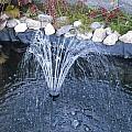 Garden Fountain by Penny Homontowski