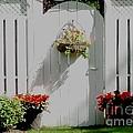 Garden Gate  by Gail Matthews