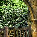 Garden Gate In Sarlat by Elena Elisseeva