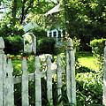 Garden Gate by Susan Savad