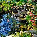 Garden Goldfish Pond by Ginger Wakem