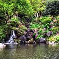 Garden Green by John Swartz