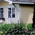Garden House Of Flowers by Gail Matthews