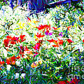 Garden Impressionism by Elaine Manley