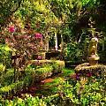 Garden Impressions by Cary Shapiro