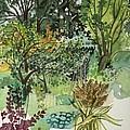 Garden In Llandielo, 1999 Watercolour On Paper by Anna Teasdale