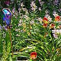 Garden by Lisa Gardella