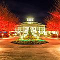 Garden Night Scene At Christmas Time In The Carolinas by Alex Grichenko
