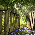 Garden Of Eden by Debra and Dave Vanderlaan