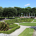 Garden Of Vizcaya by Carol Groenen