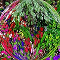 Garden Orb by Dan Sproul