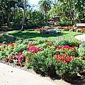 Garden Park by Aimee L Maher ALM GALLERY