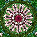 Garden Party #2 by Elizabeth McTaggart