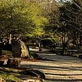 Garden Pathway by Maria Urso