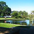 Sydney Botanical Garden Lake by Leanne Seymour