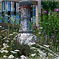 Garden Sentry by Linda Galok