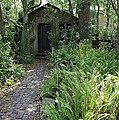 Garden Shed by Laurie Perry