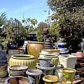 Garden Shoppe 2 At Windmill Farms by Barbara Snyder