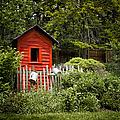 Garden Still Life by Margie Hurwich