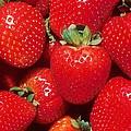 Garden Strawberries by Taiche Acrylic Art
