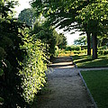 Garden Stroll by Neal Eslinger