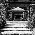 Garden Structure 1bw by Earl Johnson
