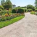 Garden Walkway by Jamie Pham