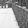 Garden Wall The Mount In Winter by Edward Fielding