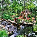 Garden Waterfall And Pond by Ginger Wakem