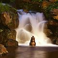 Garden Waterfall by Ellen Henneke