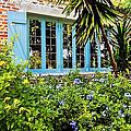 Garden Window Db by Rich Franco