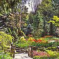 Garden With A Bridge by Eti Reid