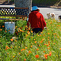 Gardening Distractions In Park Sierra-california by Ruth Hager