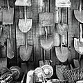 Gardening Tools Hanging On Plank Wall by Stan Strange / Eyeem
