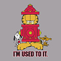 Garfield - I'm Used To It by Brand A