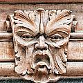 Gargoyle Head Helsingborg by Antony McAulay