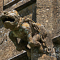 Gargoyle On The Church Of St Mary At Sudeley Castle by Louise Heusinkveld