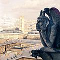Gargoyle Stryga On The Notre-dame Cathedral In Paris. France. by Perry Van Munster