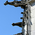 Gargoyles In A Row by Christiane Schulze Art And Photography