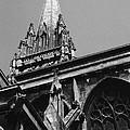 Gargoyles King's College Chapel Tower by David Hohmann