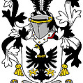 Garland Coat Of Arms Irish by Heraldry