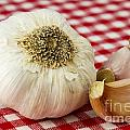 Garlic by Blink Images